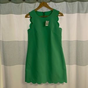 NWT J Crew scallop lime green shift dress